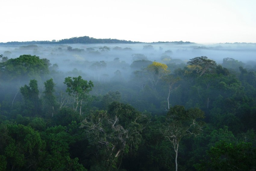 Undated photograph shows deforested Brazilian Amazon